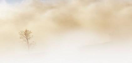 dusty sandstorm